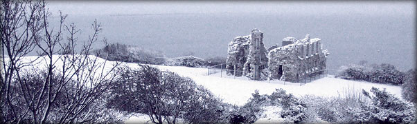 Sandsfoot Caste in the snow